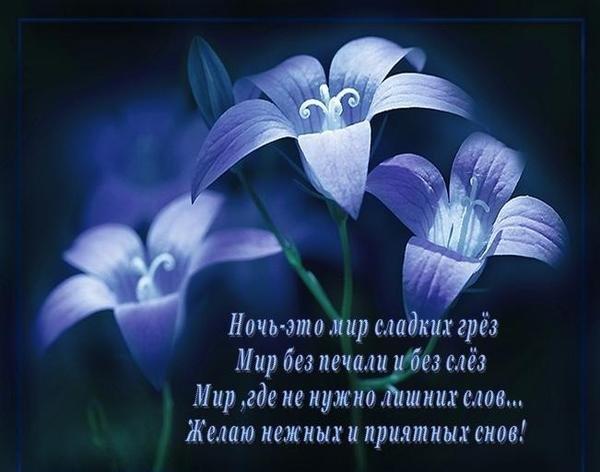 Спокойной ночи картинки в стихах девушке, совушкой открытки видео
