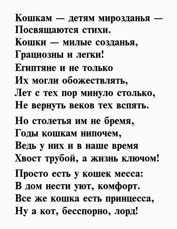 романец стихи про кошку и ее человека работах михаила